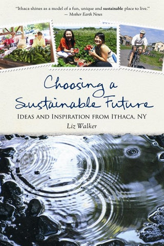 Choosing a Sustainable Future