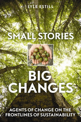 Small Stories, Big Changes (EPUB)