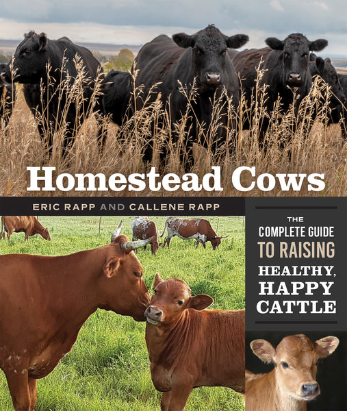 Homestead Cows