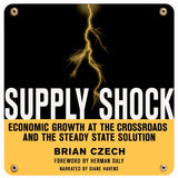 Supply Shock (Audiobook)