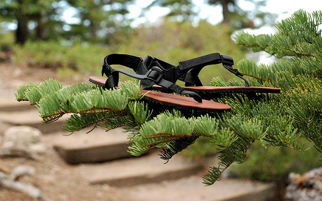 Light weight and durable Shamma Warriors sandals resting on pine branches