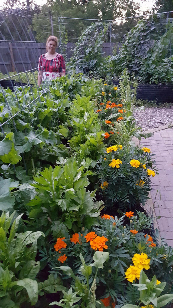 Tip of the Week- Marigolds for Pest Control