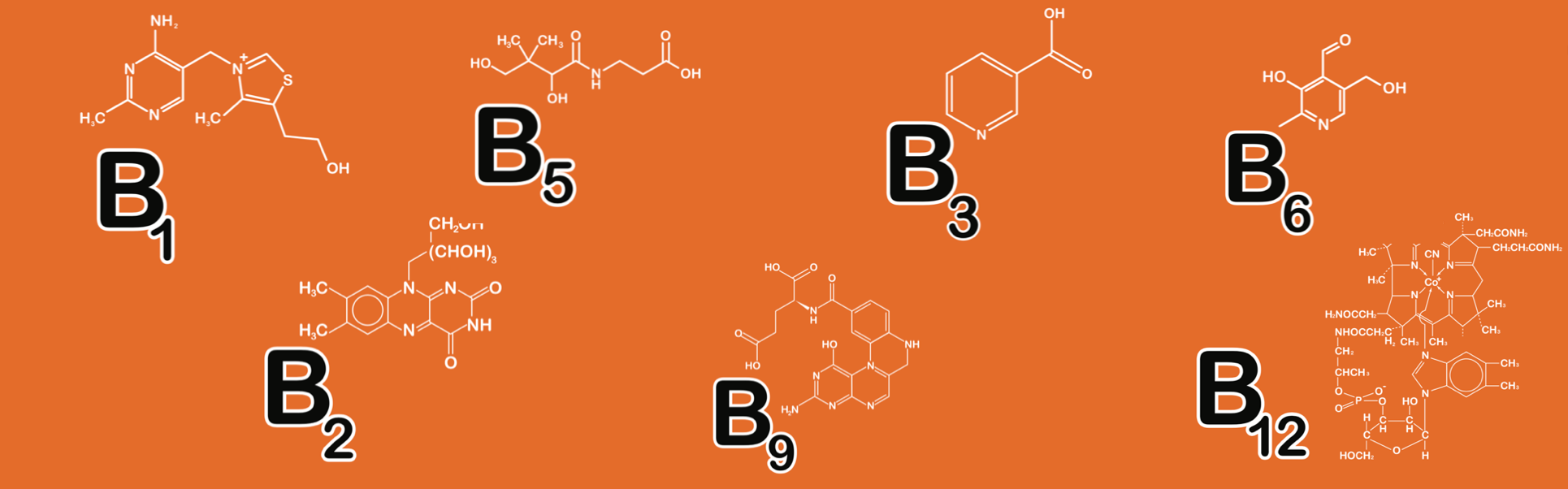 B Vitamins for Sleep and Energy