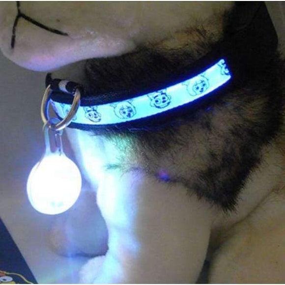 Bright Dog Pet LED Night Safety Flash Light for Collar - Instant Essentials