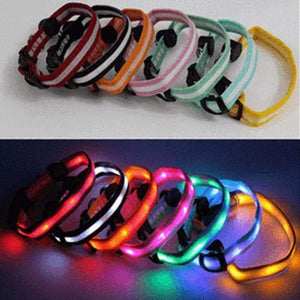 LED Dog Collar - Assorted Colors and Sizes - Instant Essentials