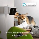 Petcube [New 2020] Cam Pet Monitoring Camera with Built-in Vet Chat for Cats & Dogs - Instant Essentials