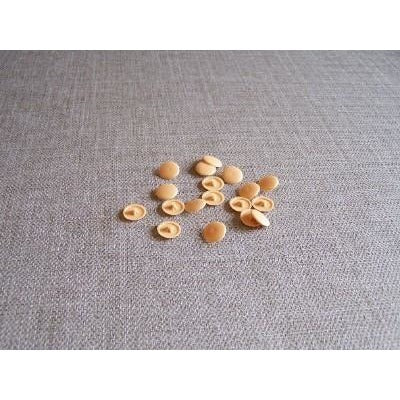 Trim Caps Pine colour 12mm, PZ2 ( per 50) - Fullie Hardware