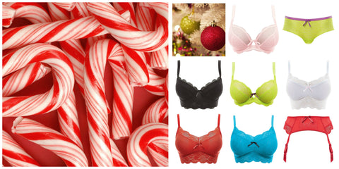 Best-Lingerie-Gift-Ideas-Glasgow-South-Poinsettia