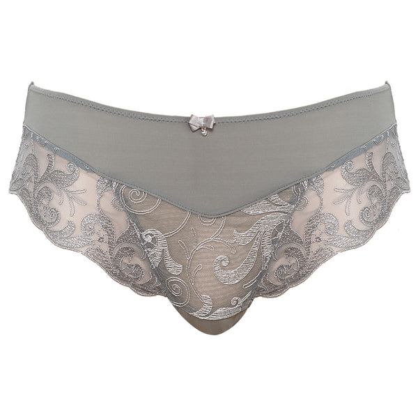Fantasie-Lingerie-Allegra-Silver-Brief-FL9095SIR-Front
