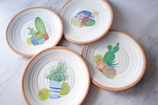 Succulent Plate and Platter