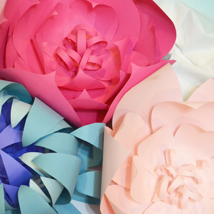 3 Party Paper Crafts Giant Paper Flowers Pinwheels Lanterns