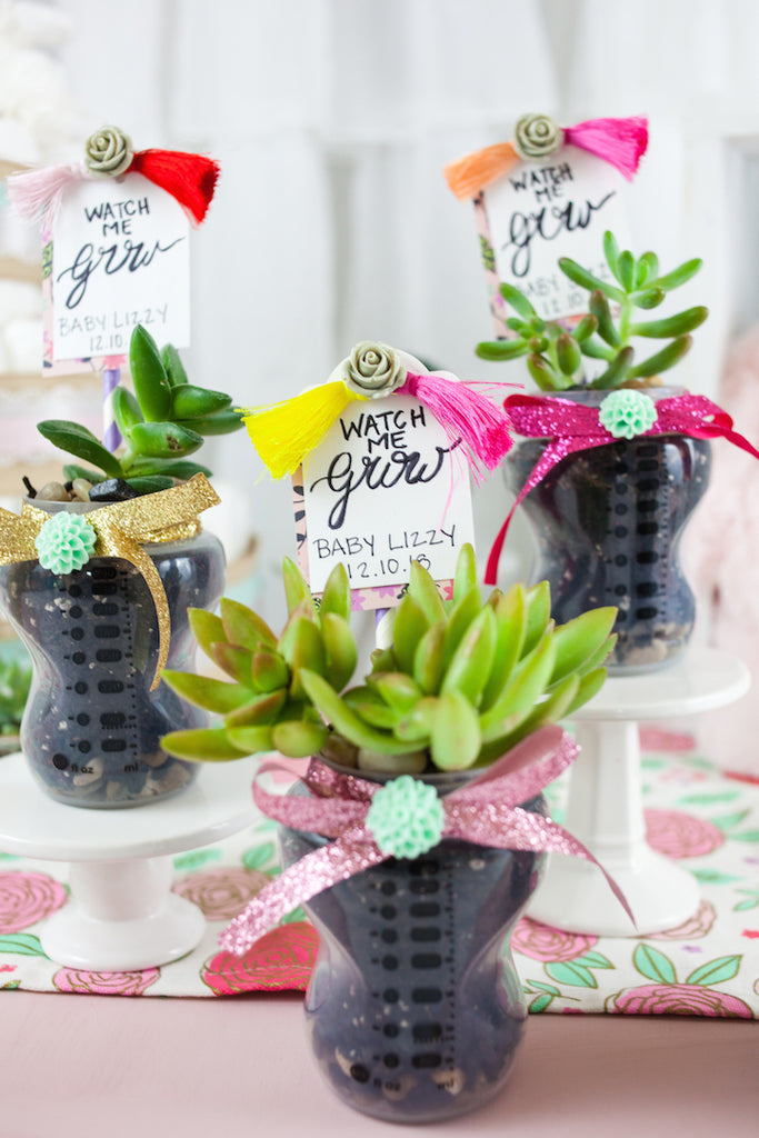 Succulent Baby Shower Favors Craft Box Girls