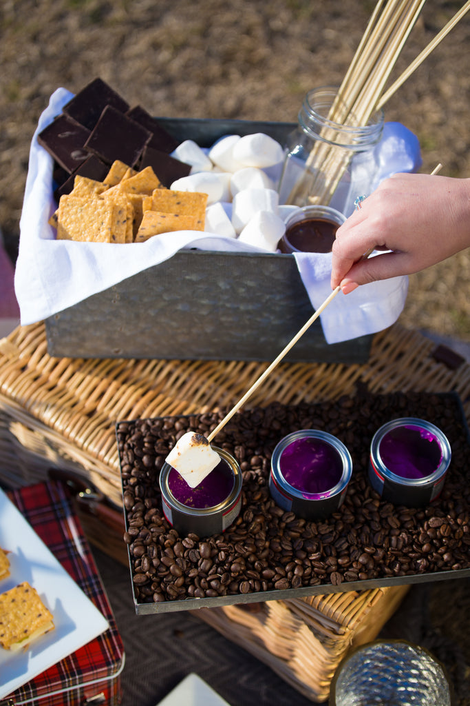S'mores Picnic