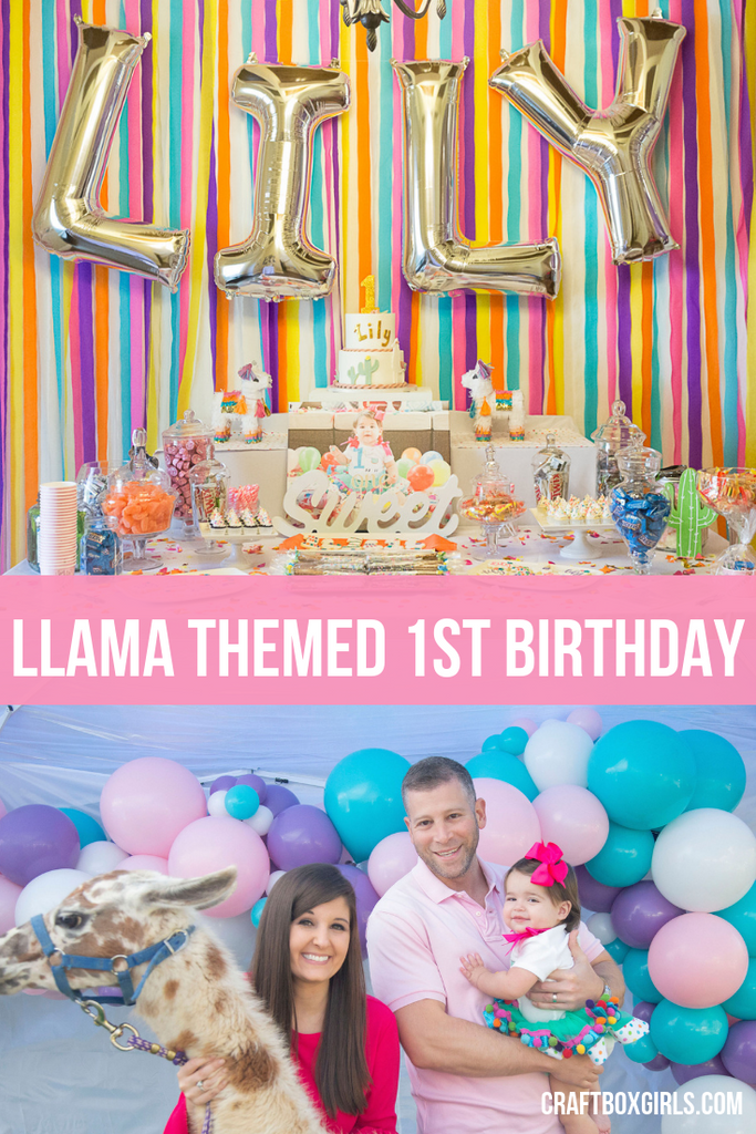 Llama Themed 1st Birthday
