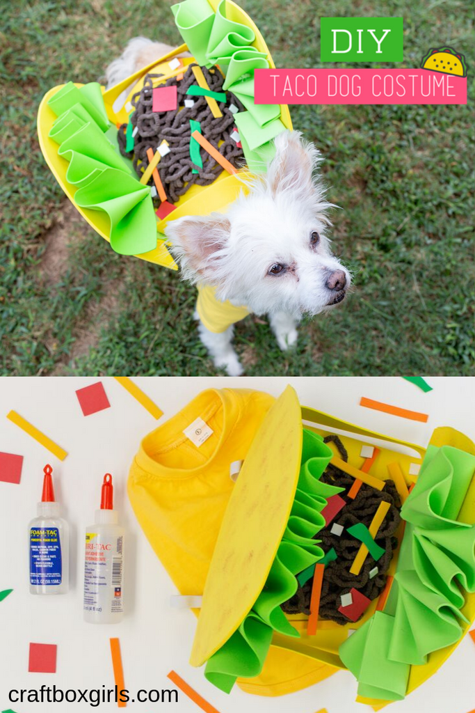 DIY Dog Taco Costume