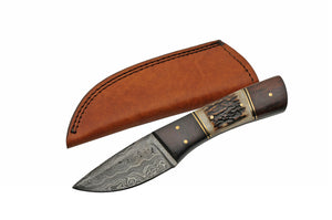 "8"" Stag & Wood Short Damascus Skinning Knife - Frontier Blades"