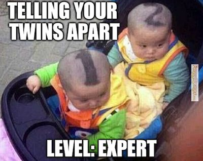 How to tell your twins apart?  Shave numbers 1 and 2 on their heads!