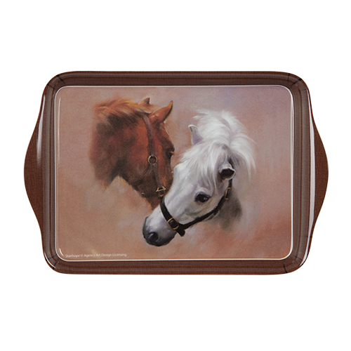 ASHDENE Scatter Tray Best Friends - Houzethat