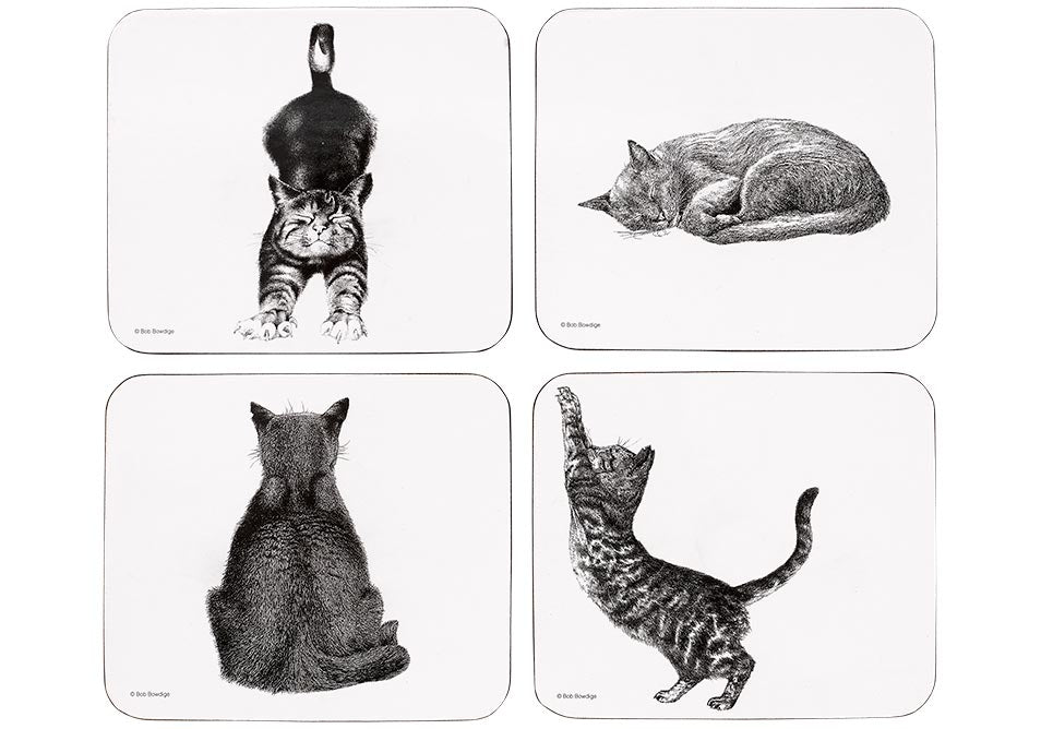 ASHDENE Casual Cats 4pk Coaster