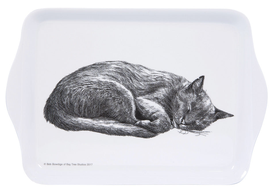 ASHDENE Casual Cats Sleeping Scatter Tray