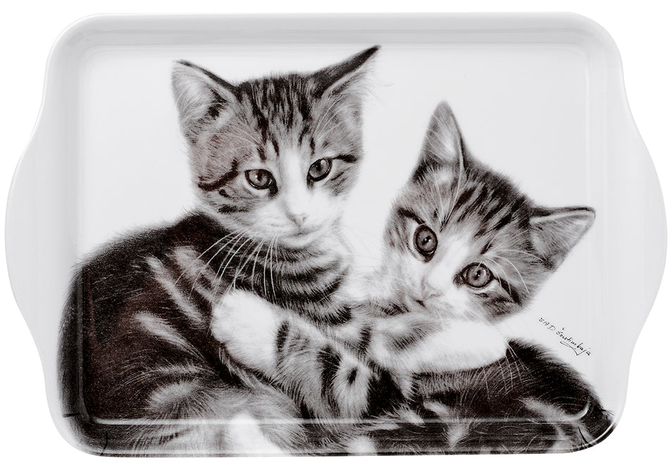ASHDENE Feline Friends Cuddling Kittens Scatter Tray