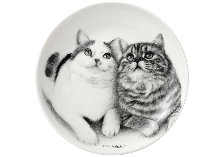 ASHDENE Feline Friends Fixated Friends Trinket Dish