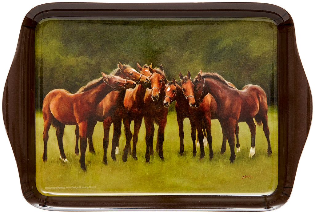 ASHDENE Scatter Tray Horse Fellowship