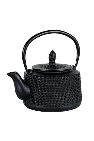 Japanese Style Cast Iron Tea Pots
