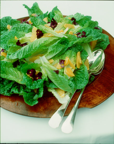 Cos Lettuce and Orange Salad