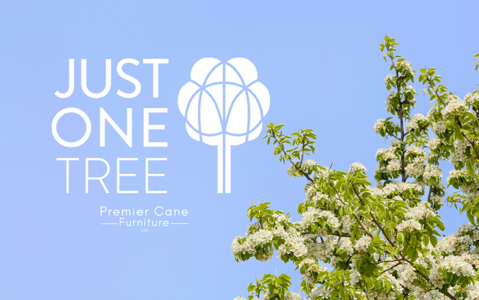 Our Better Future Tree Promise