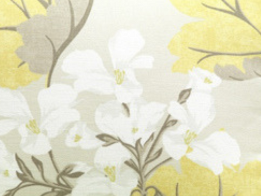 Laura Ashley Millwood Camomile