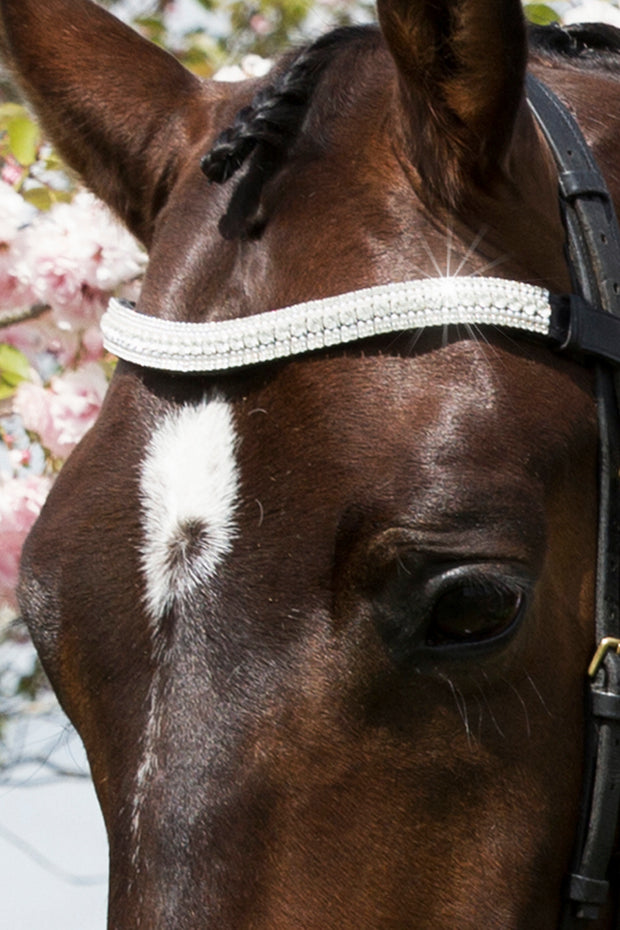 Megabling Browband - Design Your Own