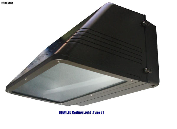 FRATER 60W LED Ceiling Light (Type 2)