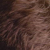 HairLab Medium Brown Hair Fibres 30g