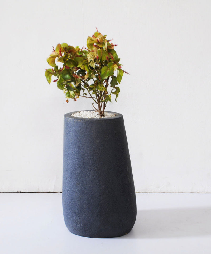 Simon Planter Medium