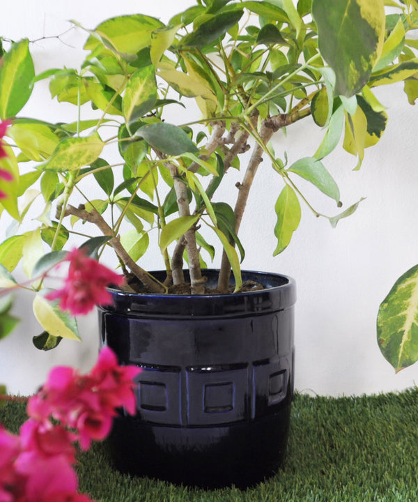 Gili Blue Planter