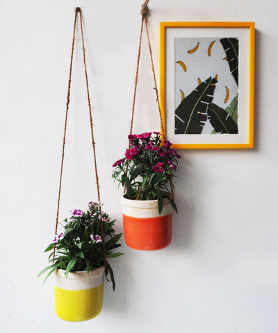 Lime Hanging Planter