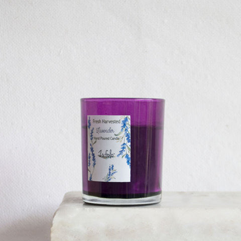 Fresh Harvested Lavender Candle