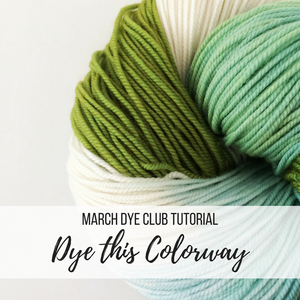 March Dye Club Tutorial - Dye this Colorway