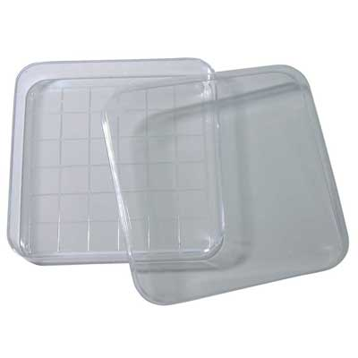 Square Dish with Lid Gridded, Pack of 10