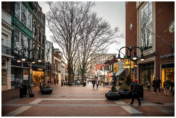 insider's guide to Charlottesville Virginia Alicia Tenise OUAI