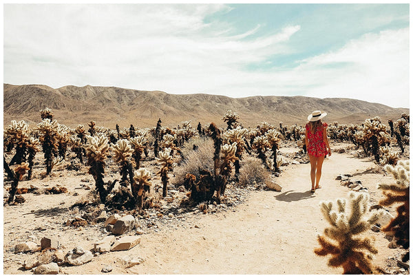 Palm Springs Travel Guide Joshua Tree Kaylee Price OUAI Haircare