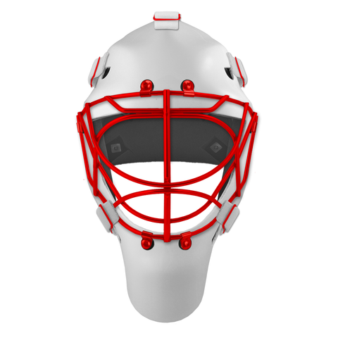 Pro Spec D1 Goalie Mask <br>Cat Eye Cage<br>DET 1