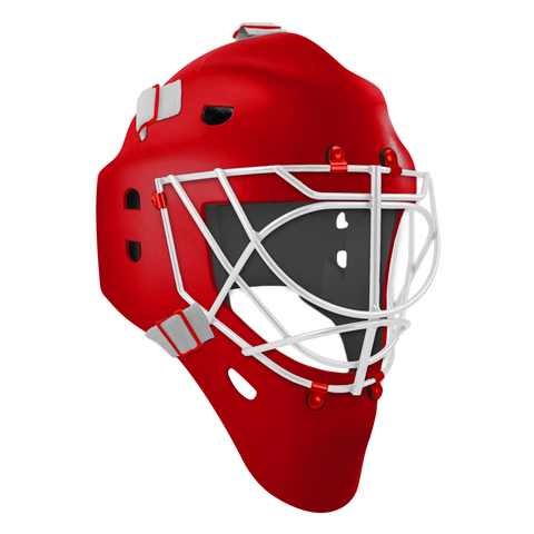 Pro Spec D1 Goalie Mask <br>Cat Eye Cage<br>DET 2