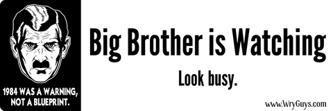 Big brother bumper sticker