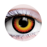PRIMAL® werewolf orange and black Halloween Costume Contact Lenses-close up