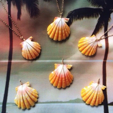 Sunrise Shell Necklace