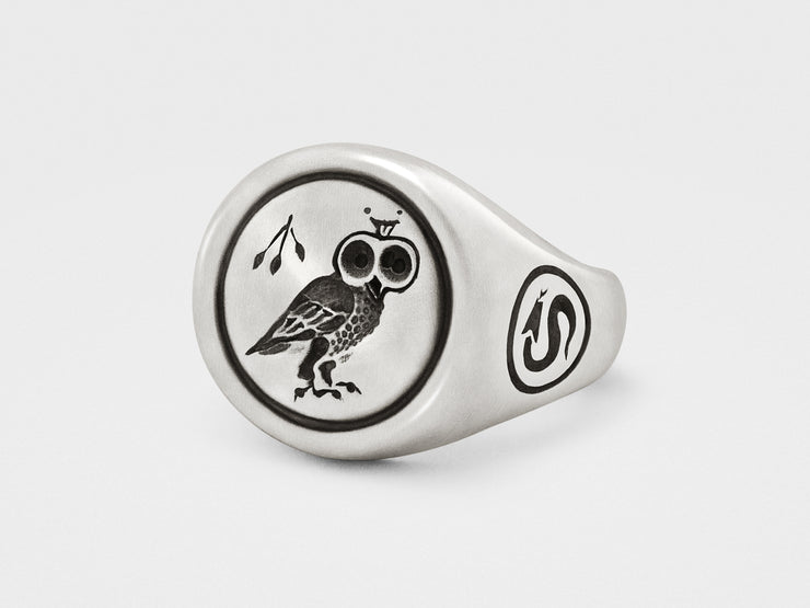 Owl Signet Ring in Sterling Silver