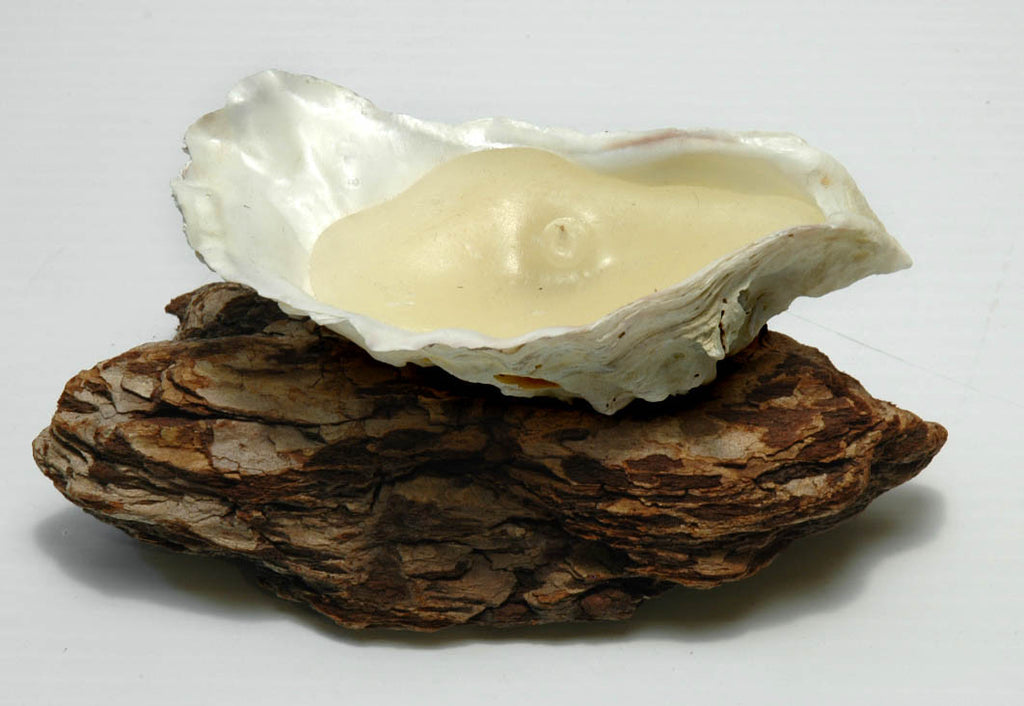 Pacific Coast Oyster Shell Candle - Boaterbits