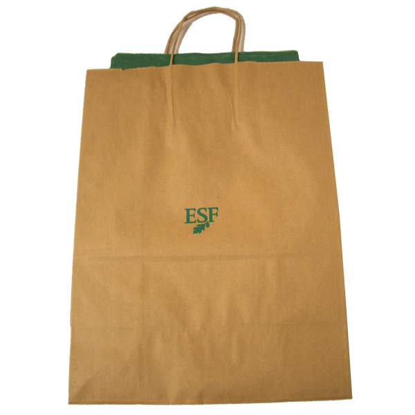Gift Bag with Tissue - Large